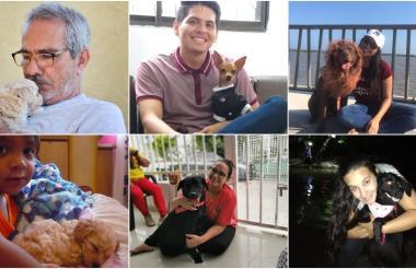 Maggie, Luna, Thiago, Tommy, Dulce y Abbey.