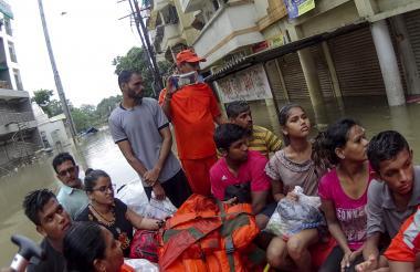 Cocodrilos cazaron perros en las calles inundadas de la ciudad india de Vadodara después de que fue golpeado por casi 50 centímetros (20 pulgadas) de lluvia en 24 horas.