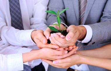 Las empresas vienen adelantando proyectos que buscan preservar los recursos naturales y  aportar a la sociedad.