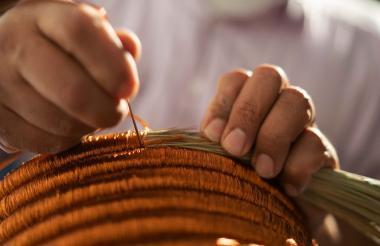 Las principales fibras de Verdi vienen de Curutí, Santander.