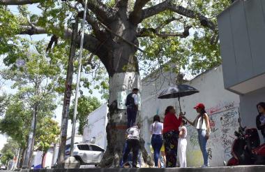 Vecinos denunciaron y pegaron carteles pidiendo la protección de la Bonga.