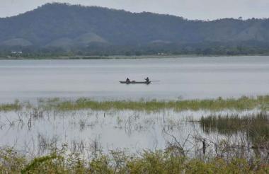 La ciénaga de Luruaco es uno de los humedales del departamento  que tiene altos niveles de deforestación.