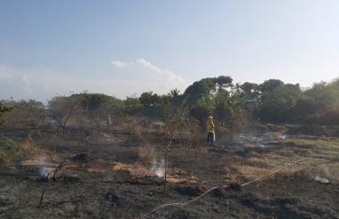 Rezagos de lo que fue un incendio en una de las zonas del municipio