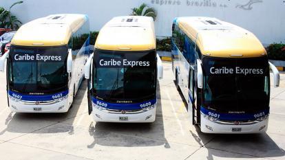 Unitransco invirtió $6 000 millones en buses de Caribe