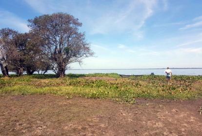 Imagen de la ciénaga de Chilloa, donde fueron hallados los cadáveres.