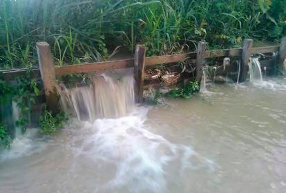 Así está el chorro que sale desde el Sinú en el sitio Palo de Agua, Lorica.