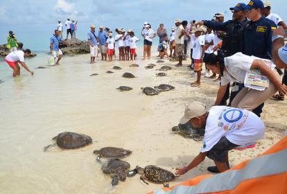 Parte de la actividad de la Armada con la comunidad en la liberación de tortugas en Playa Blanca.