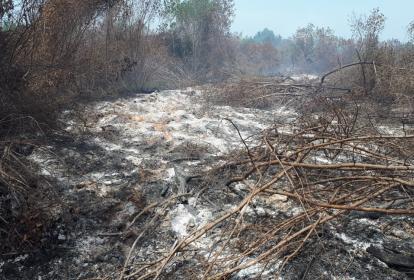 Así quedó el lugar tras el incendio forestal que duró tres días.