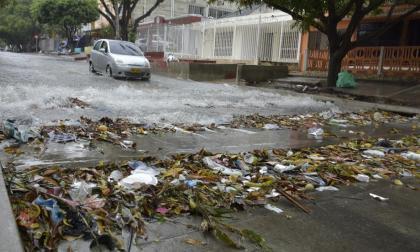 El Editorial   Basuras, ni a las calles ni a los arroyos