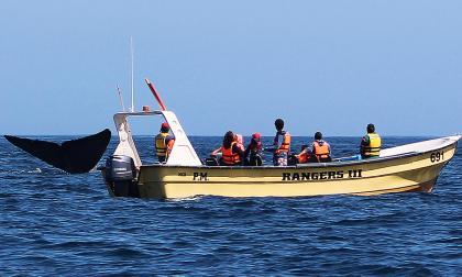 Visitantes observan desde un bote una ballena en la zona de  en Chañaral de Aceituno, una caleta de pescadores situada junto al desierto de Atacama,