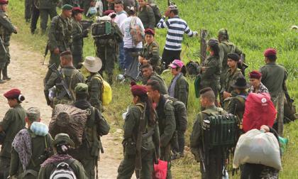 """""""La guerra sigue"""": la amenaza de la guerrilla disidente en Colombia"""