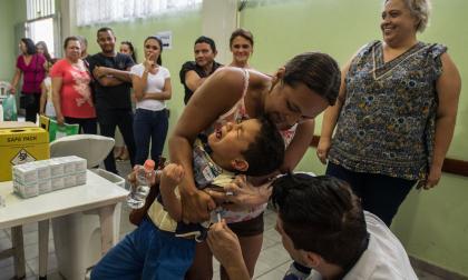 Muerte de monos por fiebre amarilla desata vacunaciones masivas en Sao Paulo