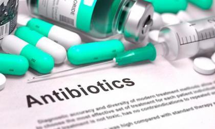 La OMS exhorta a no utilizar los antibióticos en la crianza de animales