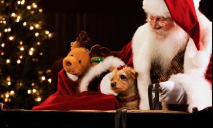 ¡Papá Noel entregó 7.200 millones de regalos!