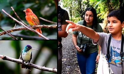 Este es Juan David, el observador de aves más joven de Colombia