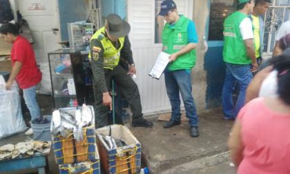 Policía Metropolitana incauta 80 kilos de pescado