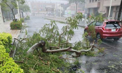 El tifón Trami sacude el corazón de Japón y deja 84 heridos