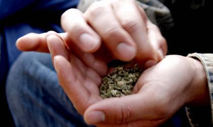 Las razones por las que demandaron el decreto de la dosis mínima