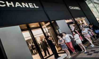 Chanel dejará de usar pieles de animales exóticos