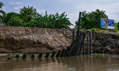 Desde el río Magdalena se aprecia el derrumbe de los tubos de hierro colocados para contener la erosión en Guáimaro.