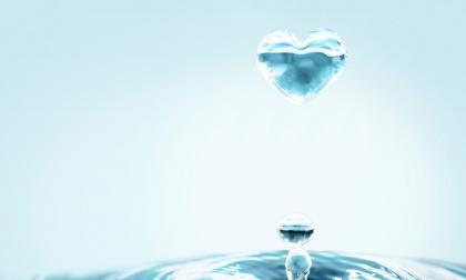 ¿Por qué se celebra el Día Mundial del Agua?