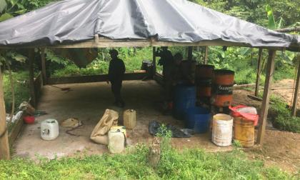 Hallan seis laboratorios de droga que se mimetizaban entre la vegetación en Puerto Libertador