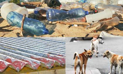 Ley del Montes   ¡Sin plásticos, ni asbesto...!