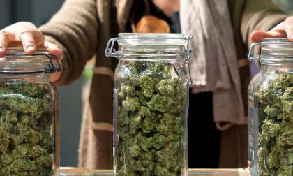 Se enciende el debate sobre la marihuana recreativa