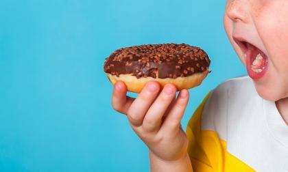 """""""La grasa solo promueve la obesidad si se mezcla con el azúcar"""""""