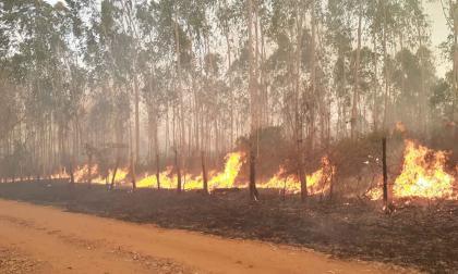 Incendio en el departamento del Magdalena. Imagen de referencia.
