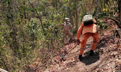 Ejército nacional trabaja para mitigar incendio forestal en la Sierra Nevada