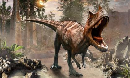 La vida tardó 700 mil años en recuperarse tras extinción de dinosaurios