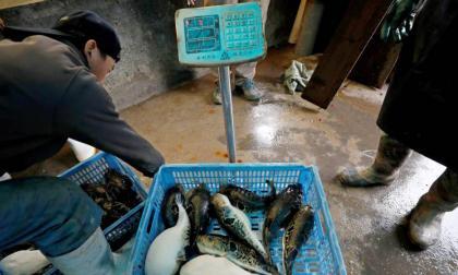 Ciudad china cierra mercados de marisco tras al menos 3 casos de coronavirus