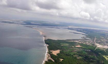 Obras civiles y agroganadería, entre amenazas de los manglares en Atlántico y Bolívar