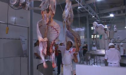 Exportaciones de carne bovina a Egipto pueden aumentar
