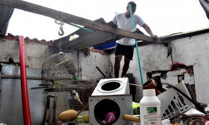 En Santo Tomás, el vendaval más reciente destechó más de 100 viviendas y causó el desplome de cuatro casas más.