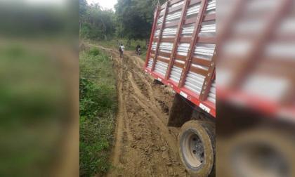 El tortuoso camino de plataneros de Córdoba para sacar sus productos