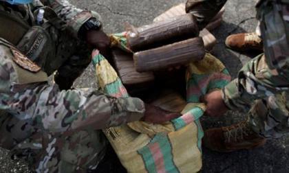Incautan droga en contenedor que salió de Colombia con destino a Italia