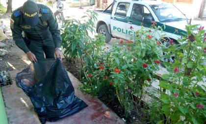 Con un ramo fúnebre amenazan a periodista en Sucre