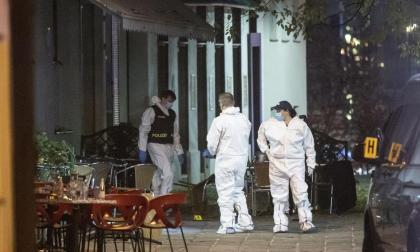 El papa expresa su dolor por el atentado de Viena y exige el fin de violencia