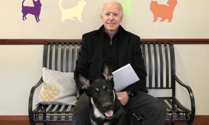 Joe Biden y su perro Major.