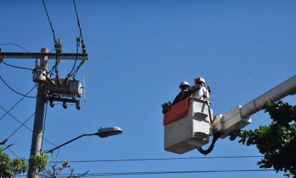 Trabajadores realizan mantenimiento de redes.