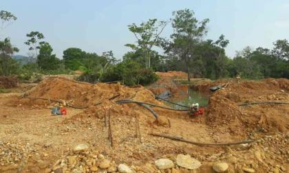 Detienen a 40 personas por deforestación y minería ilegal en el país