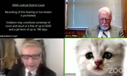 """""""No soy un gato"""": abogado se hizo viral tras activar por error filtro de Zoom"""
