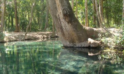 Corpoguajira prohibe presencia de bañistas en el manantial de Cañaverales