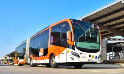 Transcaribe operará a medias y con pasajes gratis este jueves, anuncia Dau