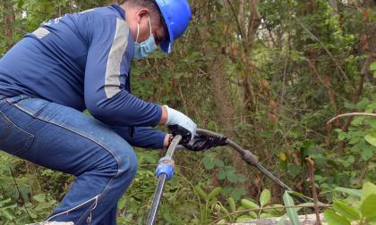 Robo de agua tiene en jaque servicio para residentes en Chorrera