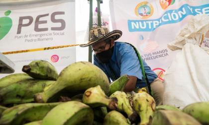 Mercados campesinos vendieron 16 toneladas de alimentos