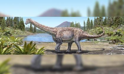 Nueva especie de dinosaurio hallada en el desierto de Atacama en Chile