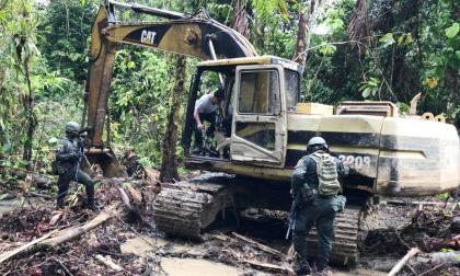 Capturan a 10 por deforestación en la Serranía de Las Quinchas